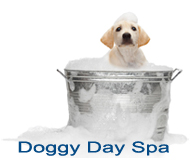 Vermont Value Vet Doggy Day Spa